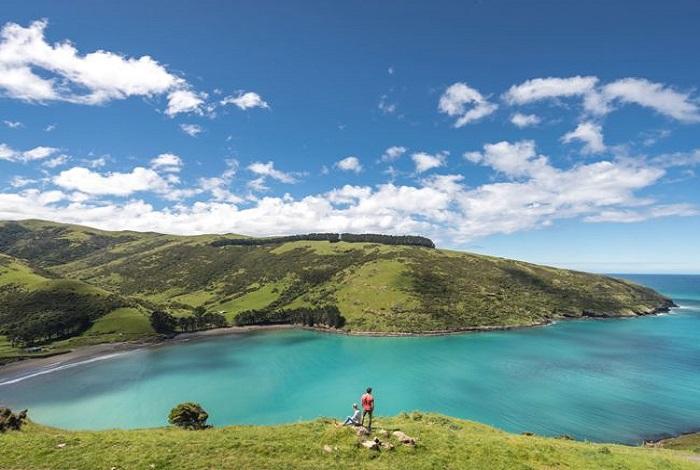 新西兰南岛凯库拉两日包车游-基督城+凯库拉2日1晚跟团游•出海观鲸+酒庄