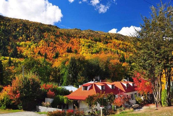 深秋之际,如画般的街道被两旁的落叶涂上厚厚金黄色,红得热烈,黄得透彻,简单而有特色的建筑掩映在彩色的海洋中,秋天的小镇,可能是全新西兰最美丽的地方。