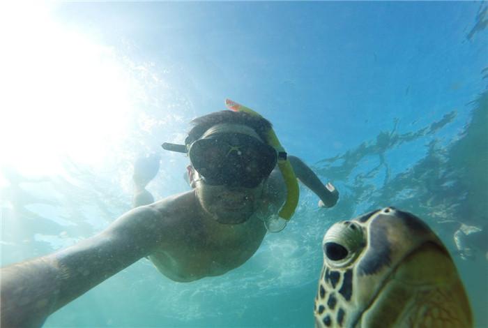 乘船抵达绿岛后,可自行漫步雨林,还可选择潜水或者选择乘坐玻璃底船出海观看多姿多彩的珊瑚礁和鱼类。