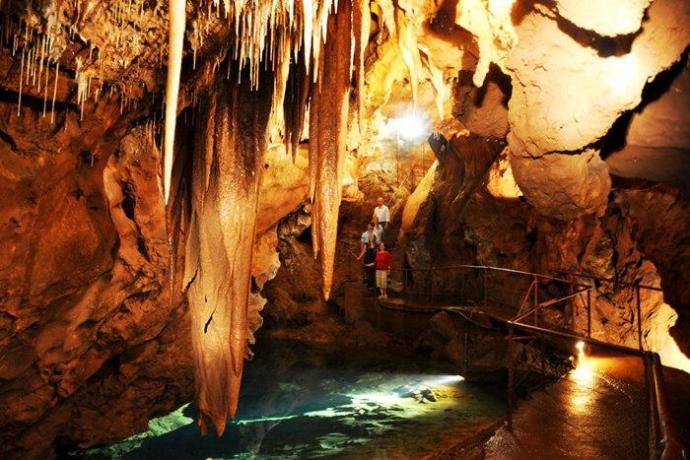 探索世界上最精致最古老的洞穴生态系统之一。针对不同身体状况,有多种导游陪同洞穴游览可供选择。石灰岩洞穴的历史可追溯到数亿万年前。您可在导游的陪同下游览洞穴化石,探索史前时期,搜寻灭绝动物化石。