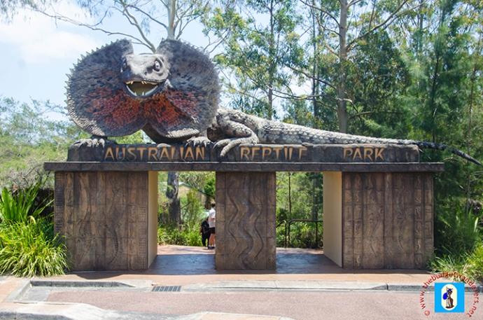在悉尼 (Sydney) 附近的澳大利亚爬行动物园和野生动物保护区,邂逅澳大利亚最友好和最致命的生物。包括鳄鱼、蛇和蜘蛛。您还可以欣赏爬行动物、考拉、袋獾和蜘蛛的表演。