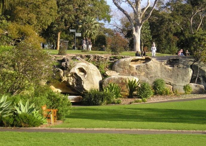 植物标牌提供植物收集的历史信息,特色的园区更是植物园历史的写照。园中建筑和设施有: 宫廷花园、棕榈园、蕨类植物区、第一农场、低地园、 展览温室、南威尔士国家标本馆等。每年都吸引了大量的游客前来参观。
