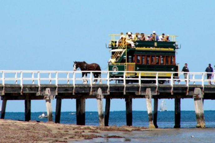 澳大利亚阿德莱德1日游·麦克拉伦酒庄+,维特港