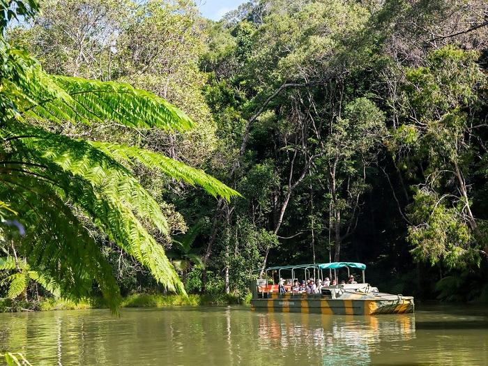 这里提供多样化的游玩体验:体验库兰达征兵,在陆地上和水里学习雨林生态学,与独特的居民会面——蝴蝶、水龙、巨蟒、乌龟及鳗鱼。乘坐独有的水陆两栖车(Army Duck) 穿梭热带雨林和热带水果园。