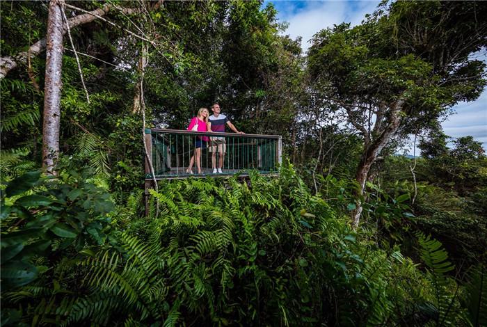 在红峰站(Red Peak Station),空中缆车的服务员将为您提供海滨旅游向导,让您了解到,在这古老的热带森林里,有着巨大的板状树根,古老的贝壳杉松树,还可以攀爬留客棕榈树。 在巴伦瀑布站(Barron Falls Station),众多小道及瞭望台凌驾于巴伦峡谷和瀑布的上方,还有众多历史展览
