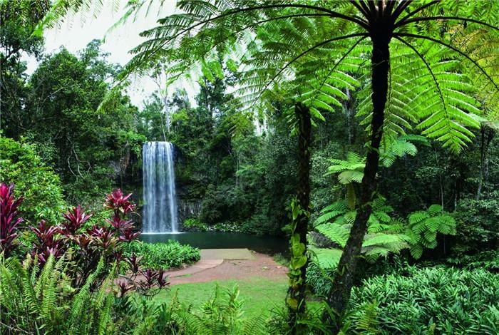 米拉米拉是原著语言,意为丰盈的水源或瀑布,这与现实相符,因为驾车从小镇出发只需几分钟就能看到一些最美的瀑布群。 米拉米拉瀑布群是最主要的一处景观,但若沿着 9 号旅行车道驶向深处,还能