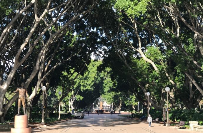 悉尼海德公园位于悉尼市中心的东侧,初建于1810年,已有200多年的历史,那里有大片洁净的草坪,百年以上的参天大树,是这里休闲的一个好去处。