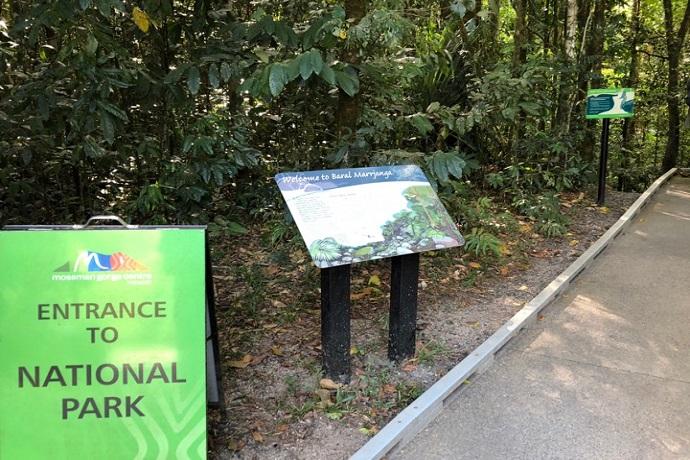 澳大利亚凯恩斯丹翠热带雨林1日包车游·棕榈湾+道格拉斯港+茅斯曼峡谷+丹翠热带雨林【生态探秘游】