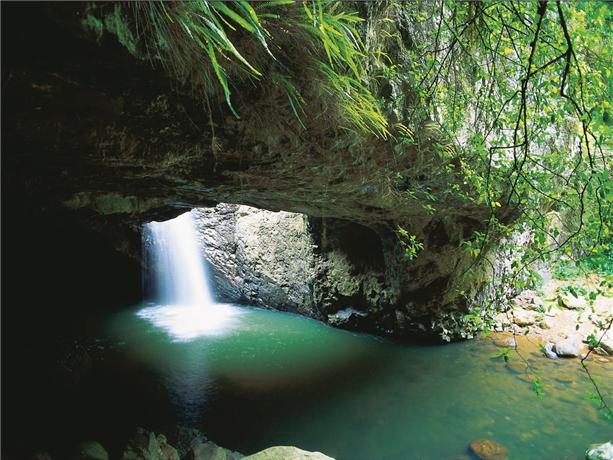 自然桥萤火虫洞(Glow Worms Cave)位于昆士兰州春溪国家公园(Springbrook National Park)最著名的自然桥(Natural Bridge),这里因水流冲蚀形成天然洞穴,形状类似于桥梁,所以被称为自然桥。
