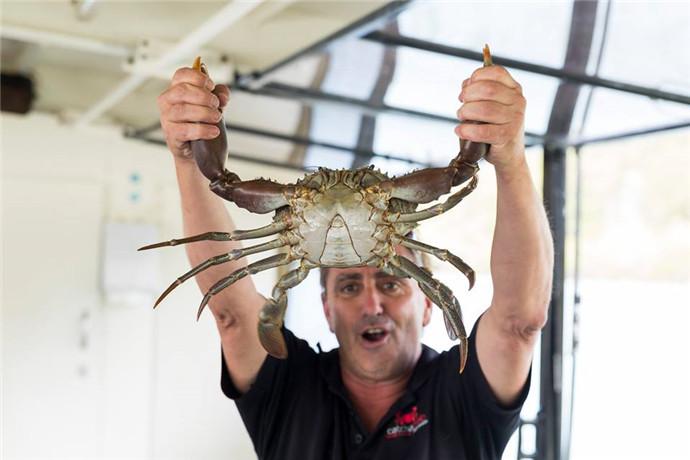 翠儿河(Tweed river)位于黄金海岸机场以南,是新南威尔士州和昆士兰州的界河,翠儿河上最受欢迎的行程就是捉螃蟹游船之旅,乘坐宽敞舒适的游船畅游的同时体验捉螃蟹,钓鱼,喂鹈鹕等等活动。