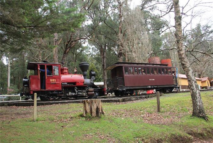 目前看到的连接贝尔格雷(Belgrave)和雷克夏(Gembrook)的这条线是原先铁路的主要部分,它贯穿森林、长满蕨类植物的山沟以及农地。