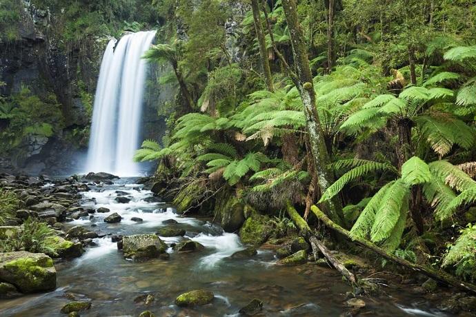 公园北部是高大的森林、蕨类繁茂的溪谷、气势磅礴的瀑布和宁静的湖泊。