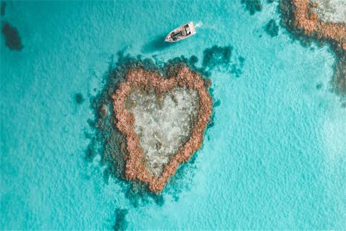 如果你不想潜水,也可以去到水下观景台,半潜艇等地方观看珊瑚,从空中看心形礁:10分钟观光飞机带你领略心形礁的美,登船后向工作人员报名,每人$150澳币起