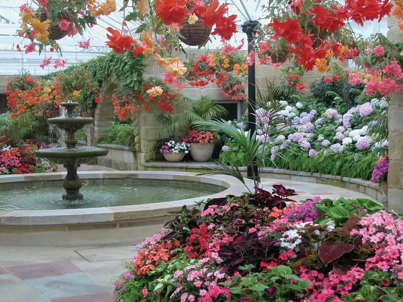 """植物园内物种非常丰富,有一间间不同主题的小屋。除了当地特有的花草,还有19世纪园丁的小木屋、罪犯建造的墙以及栽培在""""寒室"""" 中的南极洲植物。"""