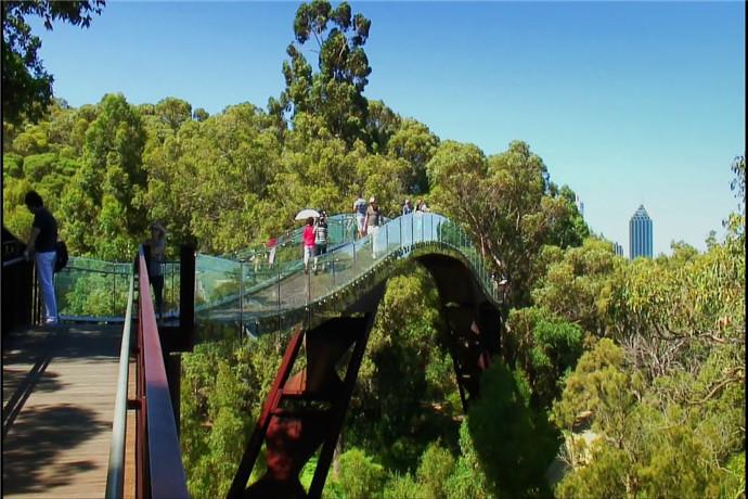 在国王公园和植物园(Kings Park and Botanic Garden)中,可以饱览城市与河流的美景,同时还可将达令山脉(Darling Range)的景色尽收眼底。雄伟坐落的州战争纪念馆 (State War Memorial)也是最佳眺望点之一。