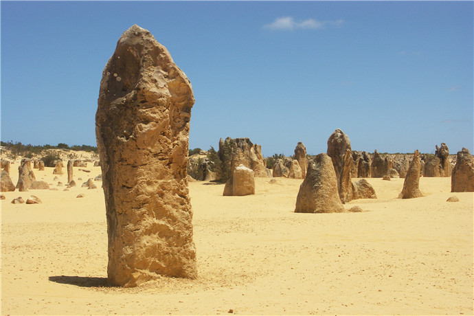 尖峰石阵里有南邦国家公园真正的沙漠景观,黄色的沙丘经过千百年的变迁拔地而成风化的岩石尖顶。公园坐落在湛蓝的印度洋边,环绕的海岸线上田园风光动人,距离珀斯有三个小时的车程。