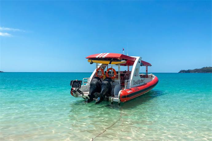 澳大利亚汉密尔顿1日游·【经典哈密尔顿岛线路】哈迪大堡礁一日游+,圣灵群岛+外堡礁+海上浮台+海洋野生动物