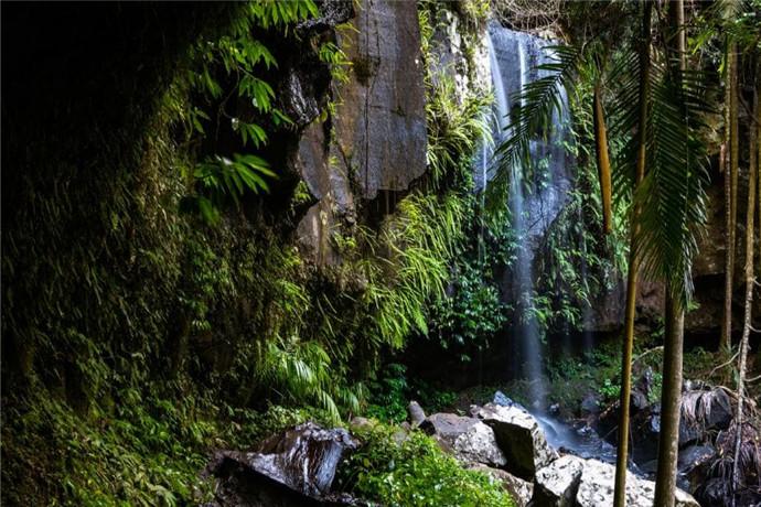 坦伯林山(Tamborine Mountain)是一片充满田园风情的绿洲,由三个遗产区组成:坦伯林山、北坦伯林山和雄鹰高地;坦伯林山距离布里斯班以南仅半小时路程,位于冲浪者天堂(Surfers Paradise)的内陆,是远离繁忙城市生活的宁静所在。