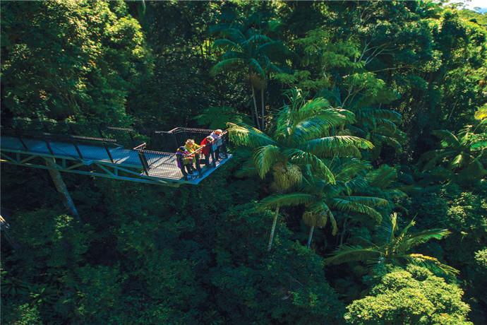 探索美丽的坦伯林山国家公园,欣赏奔流的瀑布、雨林步道和迷人的海岸线风景。