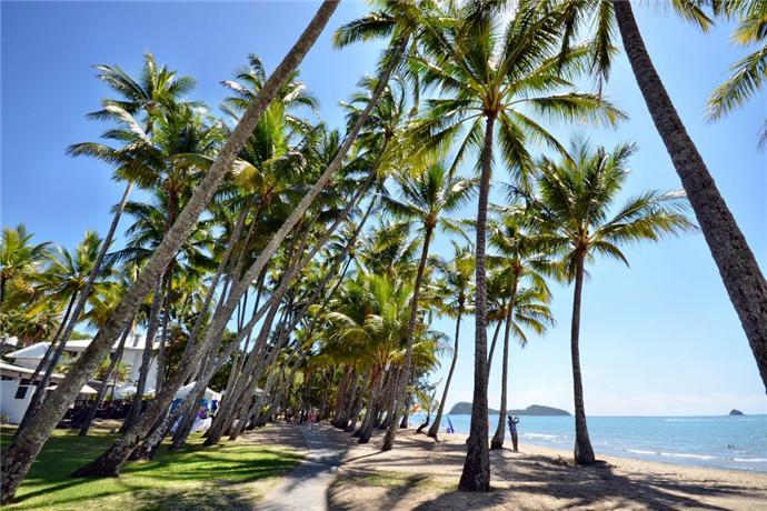 澳大利亚凯恩斯旅游包车游-市容3小时游-热带植物基地-弗莱克植物园-人工泻湖