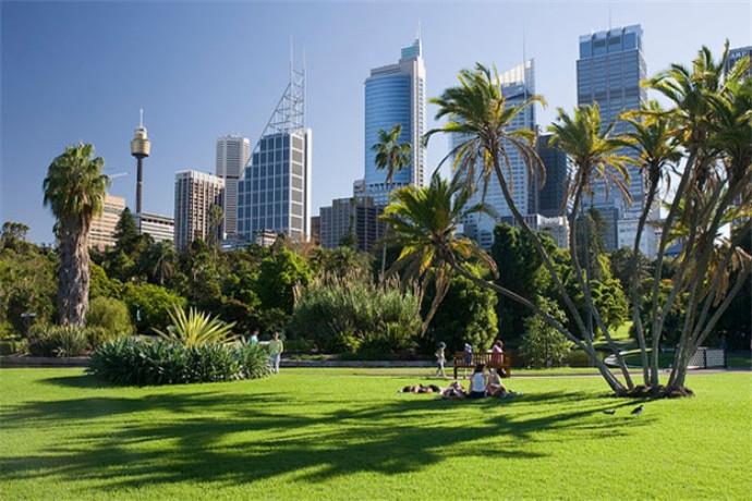 澳大利亚悉尼+布里斯班+黄金海岸+海豚岛独家行程8天7晚包车游.电影世界+天堂农庄+泰勃朗山+鹰高小镇+南斯德布鲁克岛 +悉尼周边+市区4星优质住宿+中文导游