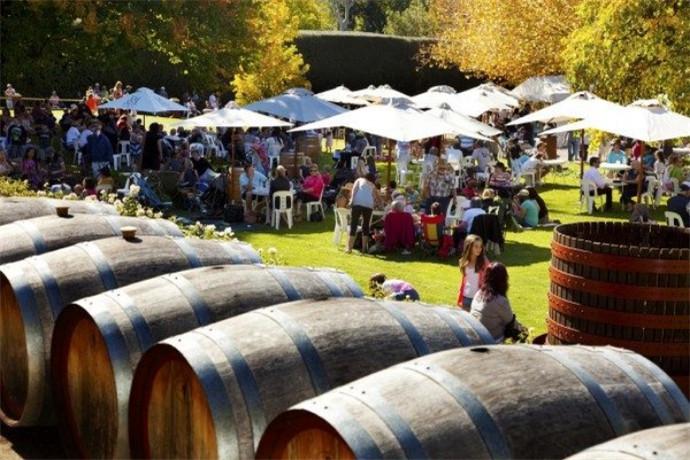 澳大利亚阿德莱德1日游·罗莎谷酒庄+,薰衣草农庄+野生动物园