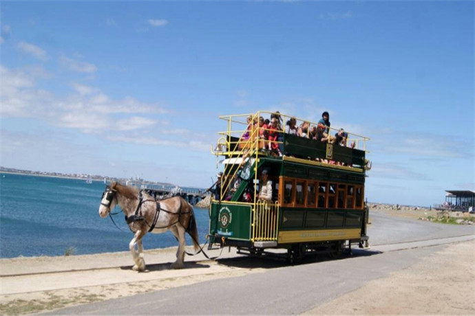 澳大利亚阿德莱德包车1日游·麦克拉伦酒庄+维特港