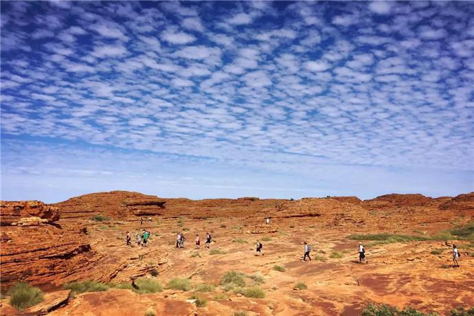 澳大利亚乌鲁鲁1日游·帝王谷探索之旅