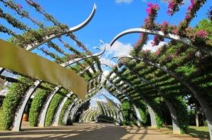 澳大利亚十二日游自助游-布里斯班故事桥,黄金海岸华纳影城,凯恩斯大堡礁,悉尼歌剧院