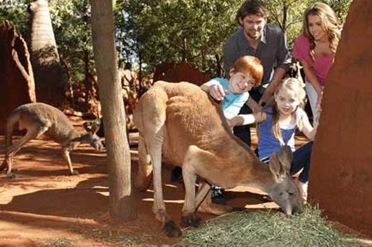 布里斯班袋鼠角 (Kangaroo Point)