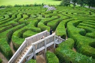 墨尔本巴士团一日游-墨尔本莫宁顿半岛一日游-Ahscombe Hedge Maze 篱笆迷宫,半岛温泉