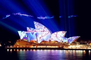 悉尼市区网红打卡景点半日游+夜游悉尼港歌舞表演三小时Showboat晚宴(三道式晚宴)游轮