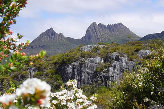 塔斯马尼亚荒野 (Tasmanian Wilderness)