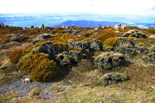 塔斯马尼亚惠灵顿山 (Mt Wellington)