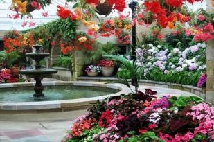 塔斯马尼亚费尔德山一日游-塔斯马尼亚旅游,皇家植物园,费尔德山国家公园,罗素瀑布