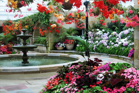 塔斯马尼亚皇家植物园( Royal Tasmanian Botanical Gardens)