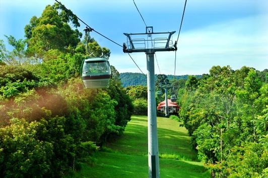 凯恩斯天梯热带雨林缆车单程(Skyrail Rainforest Cableway)