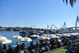 澳大利亚八日游-澳洲自助游,悉尼,猎人谷,墨尔本亚拉河谷,阿德莱德,袋鼠岛,奔富美酒体验