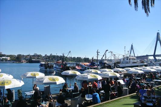 悉尼鱼市场 (Sydney Fish Market)