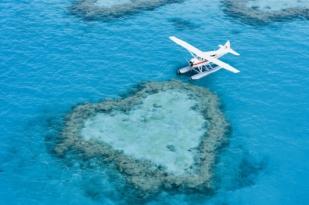 哈密尔顿八日游-哈密尔顿自由行,心形大堡礁,白天堂沙滩,白日梦岛,长岛(浪漫蜜月之旅)