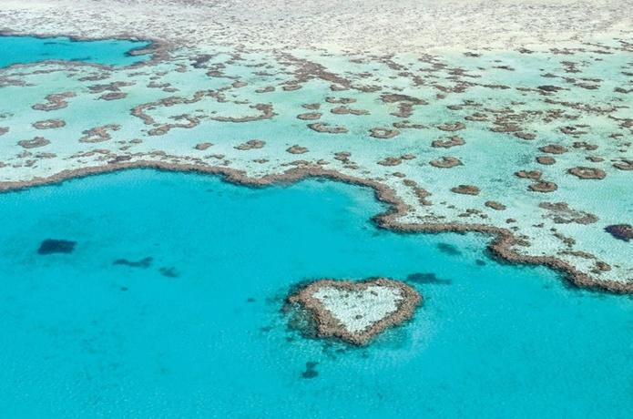 哈密尔顿心形大堡礁(Heart Reef )