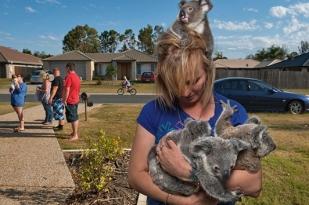 澳大利亚汉密尔顿1日游·【经典哈密尔顿岛线路】码头村+猫眼海滩+曼他雷咖啡屋