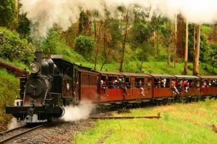 墨尔本一日游-帕芬比利蒸汽小火车