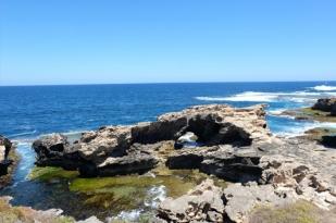西澳珀斯1日游-罗特尼斯岛,小袋鼠Quokka休闲之旅