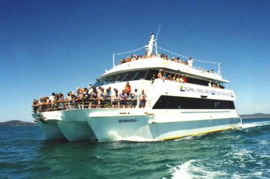 悉尼史蒂芬港月影游轮-观海豚之旅