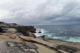 澳大利亚悉尼市区+周边徒步一日游·植物湾国家公园