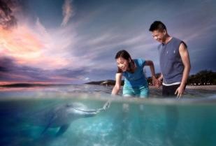 澳大利亚布里斯班+黄金海岸6天5晚蜜月休闲之旅-可伦宾野生动物园+阳光海岸+海豚岛滑沙观豚